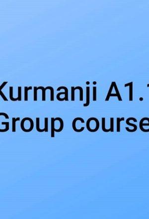 kurmanjiA1.1