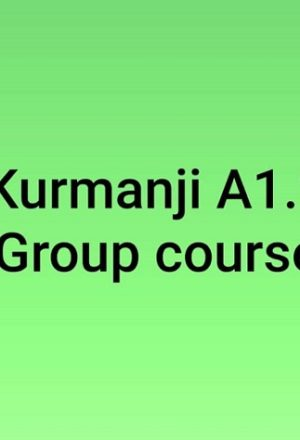 kurmanji-group-course