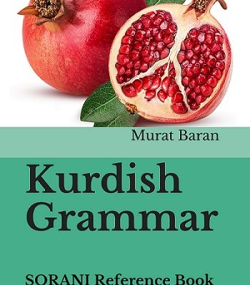 Kurdish Grammar- SORANI Reference Book